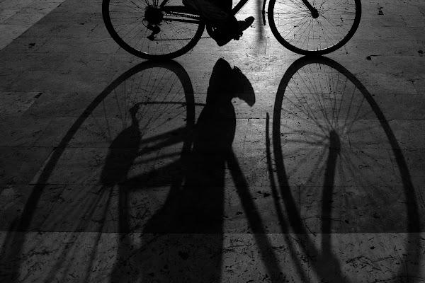 uomo in bici di slyweb