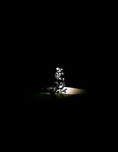 notte fonda in paese.  di Barbara Pieri
