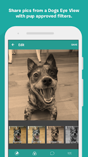 BarkCam- screenshot thumbnail