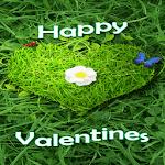 Green Love Live Wallpaper icon