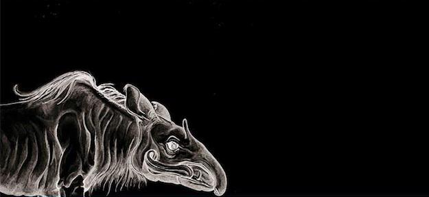 Zeichnungen von Ronny Wollmann in Zusammenarbeit mit Felix Grusa