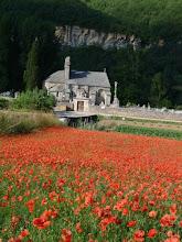 Photo: l'église st Pierre