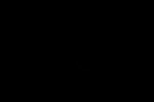 elite+body+contouring+logo+black