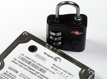 Seagate HDD Momentus 5400 FDE.2