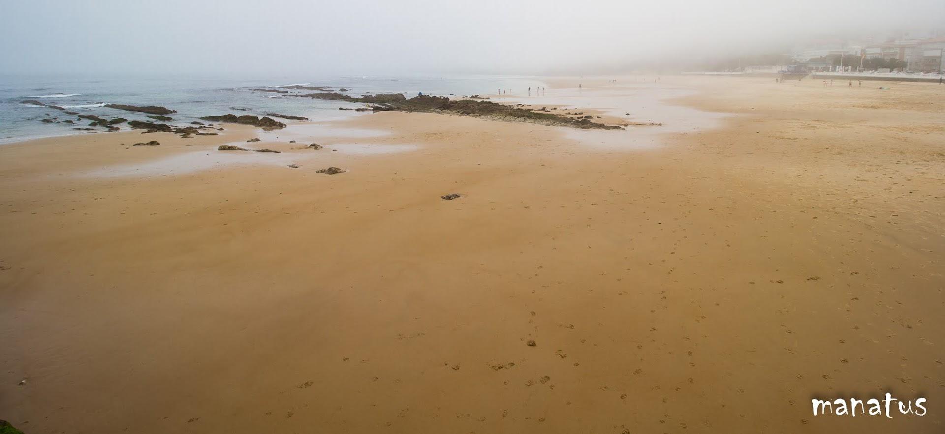 playa con niebla
