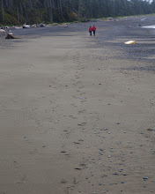 Photo: Carolyn and Rick take a nice stroll.