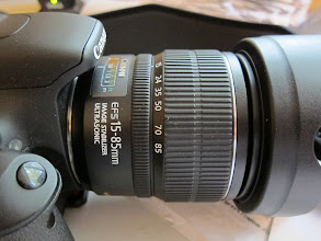 Photo: My New Used Lens