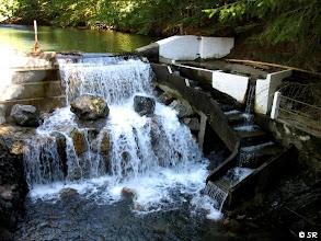 Photo: Un ruisseau réputé pour ses truites, et une échelle à poissons a même été installée afin qu'elles puissent remonter la cascade située au niveau du Chalet Pedro