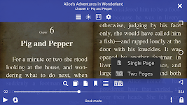 screenshot of EPUB Reader for all books you love