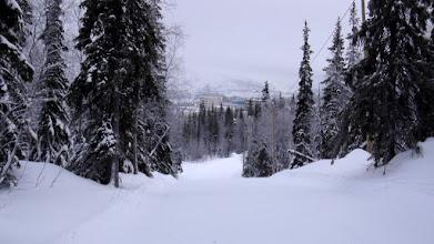 Photo: Лыжная трасса в Тирвасе