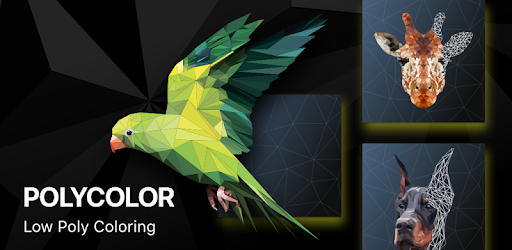 PolyColor - Color by Number Poly Art Coloring Game for PC