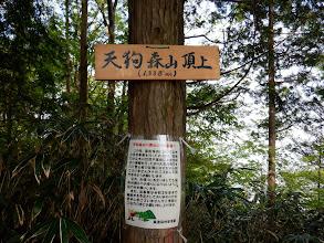 天狗森山1