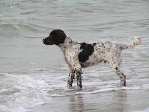 Photo: FRITZ aan zee