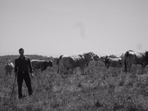 Sébastien et le troupeau,  il y a quelques années maintenant..!