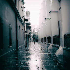 Pirate's Alley  by Jennifer Eaton Roberts - Buildings & Architecture Public & Historical ( history, new orleans, pirate's alley, black and white, french quarter, architecture, rain )