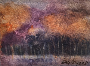 Photo: cataloochee valley.   watercolor.  3x5