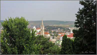 Photo: Cimitirul Turda-Veche - Vedere panorama - Biserica Reformata de pe Str. Bogdan petriceicu Hasdeu -  2017.07.05