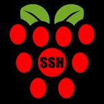 Raspberry SSH Custom Buttons Icon