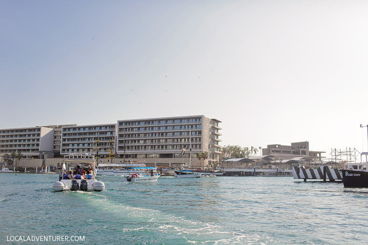 Cabo Expeditions (Fun Things to Do in Cabo San Lucas).