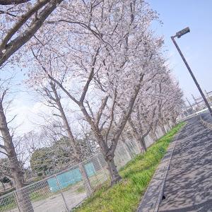 エクリプスクロス  のカスタム事例画像 ユウキ☆満腹王子7さんの2020年03月23日07:41の投稿