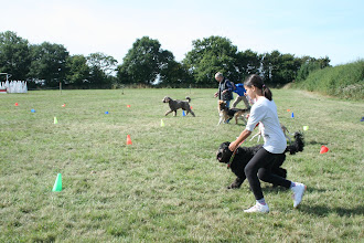 Photo: DogBasics Fun Day 2013 - kicking off the Spoon Race Slalom!