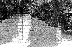 Photo: Graveyard of freedom fighter Motiur Rahman, in Vojonpur