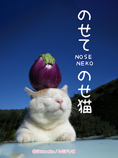 のせて のせ猫- screenshot thumbnail