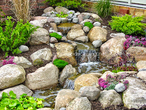 Photo: #PondlessWaterfalls Monroe County, Rochester NY, Disappearing #Waterfalls, Waterfall Designer by Acorn Ponds & Waterfalls, Certified Aquascape Contractor since 2004.  Visit our website www.acornponds.com and give us a call 585.442.6373.  Check out these Beautiful Aquascape Pondless Waterfalls installed in Webster, NY and Designed for this Front Yard Garden Room by Acorn Ponds & Waterfalls, Pond Designer, Landscape Designer of Rochester NY.  Interested in a Waterfalls without the pond? Please click here: www.acornponds.com/pondless-waterfalls.html  This Front yard Outdoor Room included Pondless Waterfall Design and Installation, Low Voltage Landscape Lighting and Low Maintenance Plantings. This Aquascape Pondless Waterfalls and Stream was designed to catch Rainwater from the Roof of the house making it easy to maintain. The homeowner hardly ever needs to even add water! The LED Landscape Lighting adds hours of enjoyment and so economical to run.  To learn more about Aquascape Pondless Waterfalls, please click here: www.facebook.com/notes/acorn-landscaping-landscape-designlightingbackyard-water-gardens/pondless-waterfalls-disappearing-waterfalls-waterfall-design-contractor-in-roche/473209309382863  For more info about Acorn Ponds & Waterfalls Services, please click here: www.acornponds.com/services.html  Acorn Ponds & Waterfalls of Rochester NY, 585-442-6373, is a Certified Aquascape Contractor, Landscape Designer, Outdoor Lighting Designer, Installer, Builder, Contractor and Design Service Company from Rochester, NY. We have professional Installation and Design Services available for the following: Landscape Design Outdoor Room Design Backyard Ponds and Waterfalls Design & Construction Patios and Walkways: Paver, Stone, Brick Low Voltage Landscape Lighting LED Landscape Lighting Swimming Ponds Ecosystem Ponds LED Outdoor Lighting Retaining Walls Fountains Water Features Pondless Waterfalls Pond Maintenance and Design Aquatic and Under Water LED Lights Bubbling
