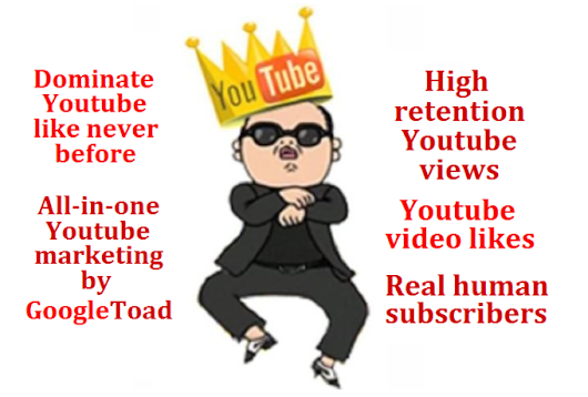 I will generate 2000 youtube views 100 video likes and 25 real human subscribers