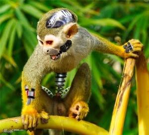 http://somaisumcaraestranho.files.wordpress.com/2010/08/animais_robc3b4s8.jpg?w=300