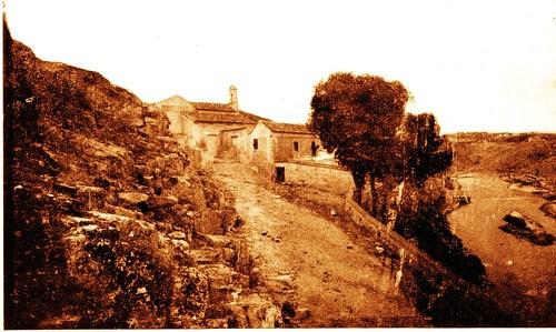 Grandes almeces (Celtis australis) en la Ermita del Valle (Toledo) a principios del siglo XX