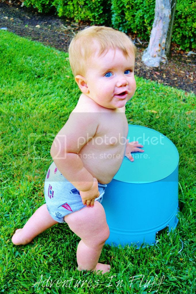 Mommy Loves Maddy One-Size Hybrid Fitted Cloth Diaper - On my baby