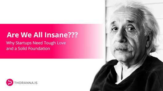 Are We All Insane??? - Why Startups Need Tough Love and a Solid Foundation