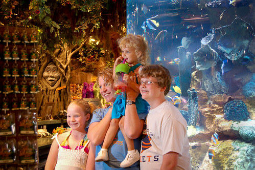 101710_rainforestcafe.jpg