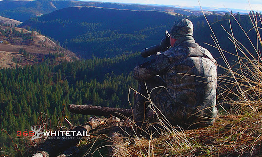 Don't Take Yes For An Answer | 365 Whitetail