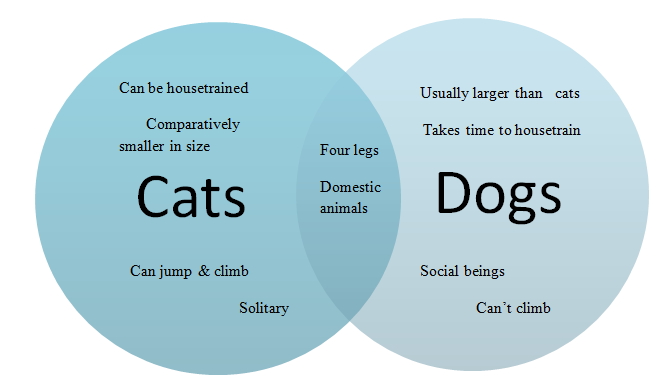 how to write compare and contrast essay dogs and cats