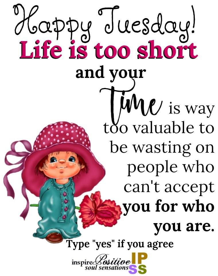 Life Is Too Short Tuesday Quote Pictures Photos And Images For