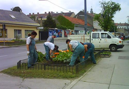 gardeners1