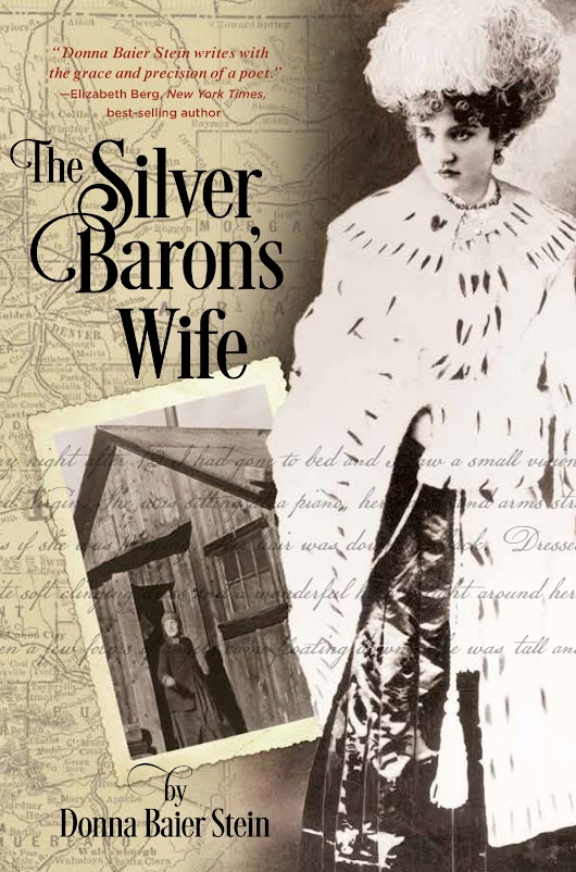 Review of The Silver Baron's Wife