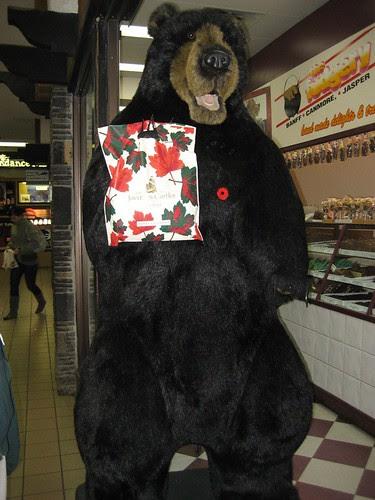 Big Bear at the fudge store in Banff