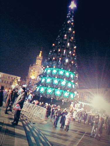 New Year fur-tree