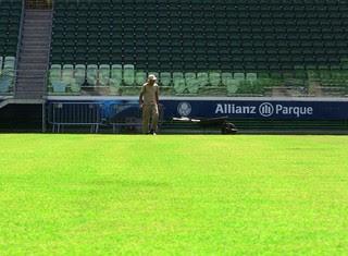 Gramado Arena Palmeiras (Foto: Tossiro Neto)