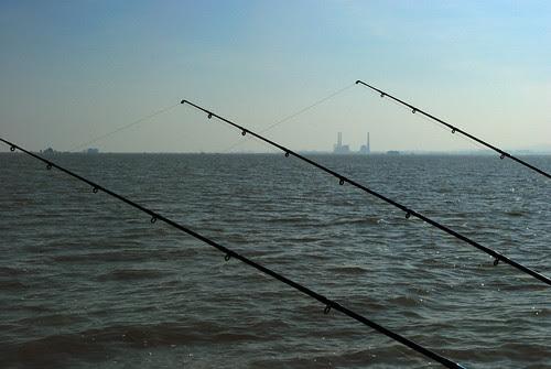 The essence of sturgeon fishing