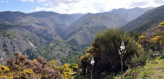 How To Explore Peneda-Gerês National Park: Villages & Hiking Trails | Julie Dawn Fox in Portugal