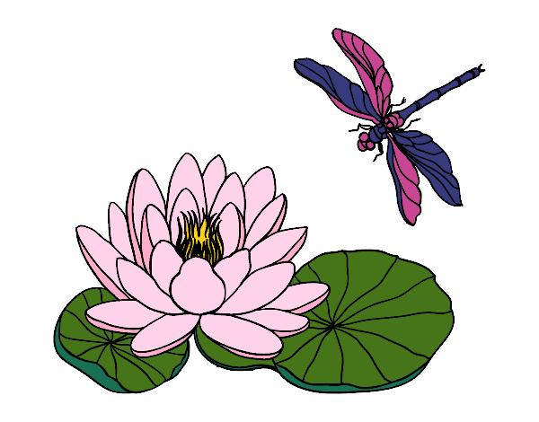 Dibujo De Flor De Loto Pintado Por Maryeloz En Dibujosnet El Día 07