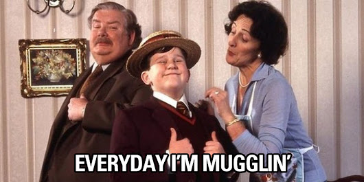 "Heartbreaking News for U.S. Potterheads: Apparently, You are Not ""Muggles"""