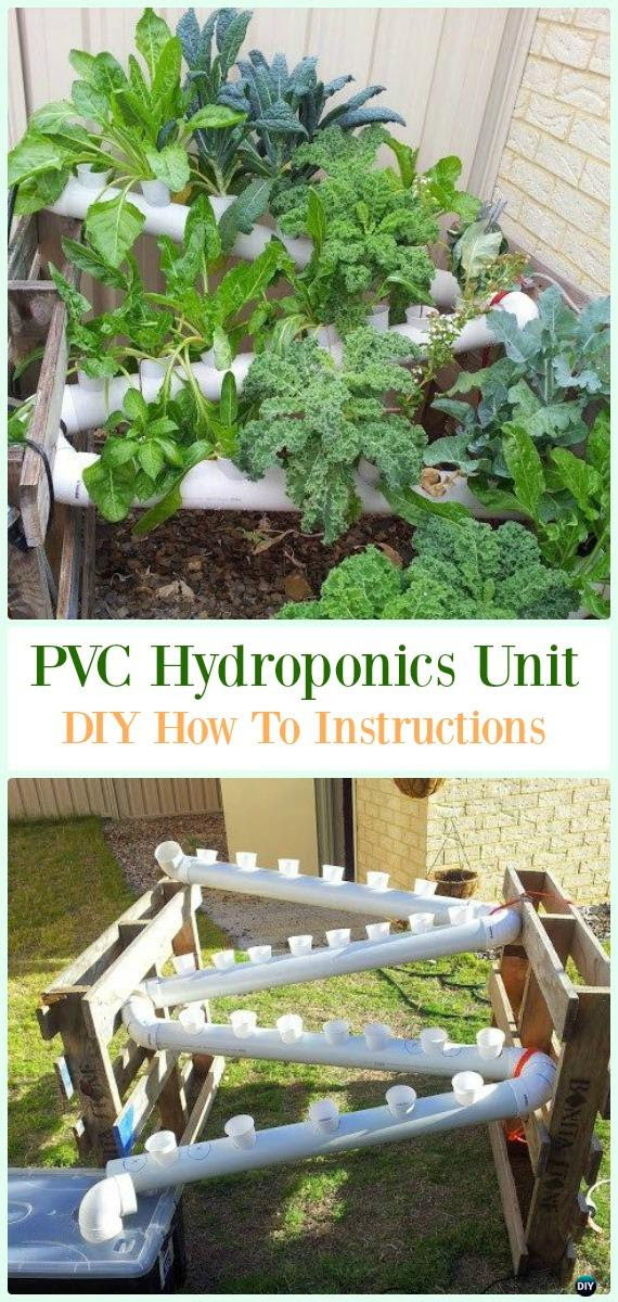 Low Budget Diy Garden Designs