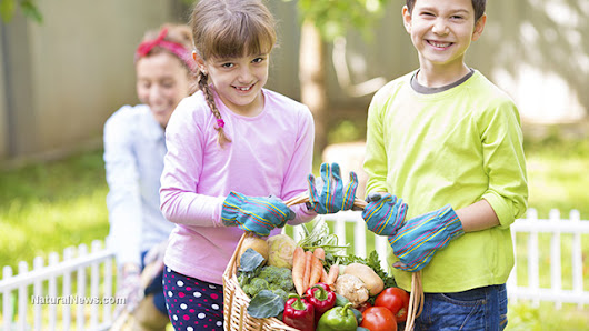 Healthy food intake shown to produce far higher reading, writing and comprehension skills in children