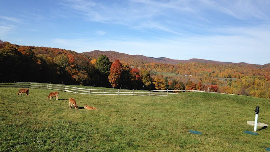 What it's really like to work remotely from Vermont