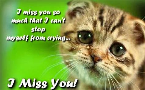 Cannot Stop Crying! Free Miss You eCards, Greeting Cards